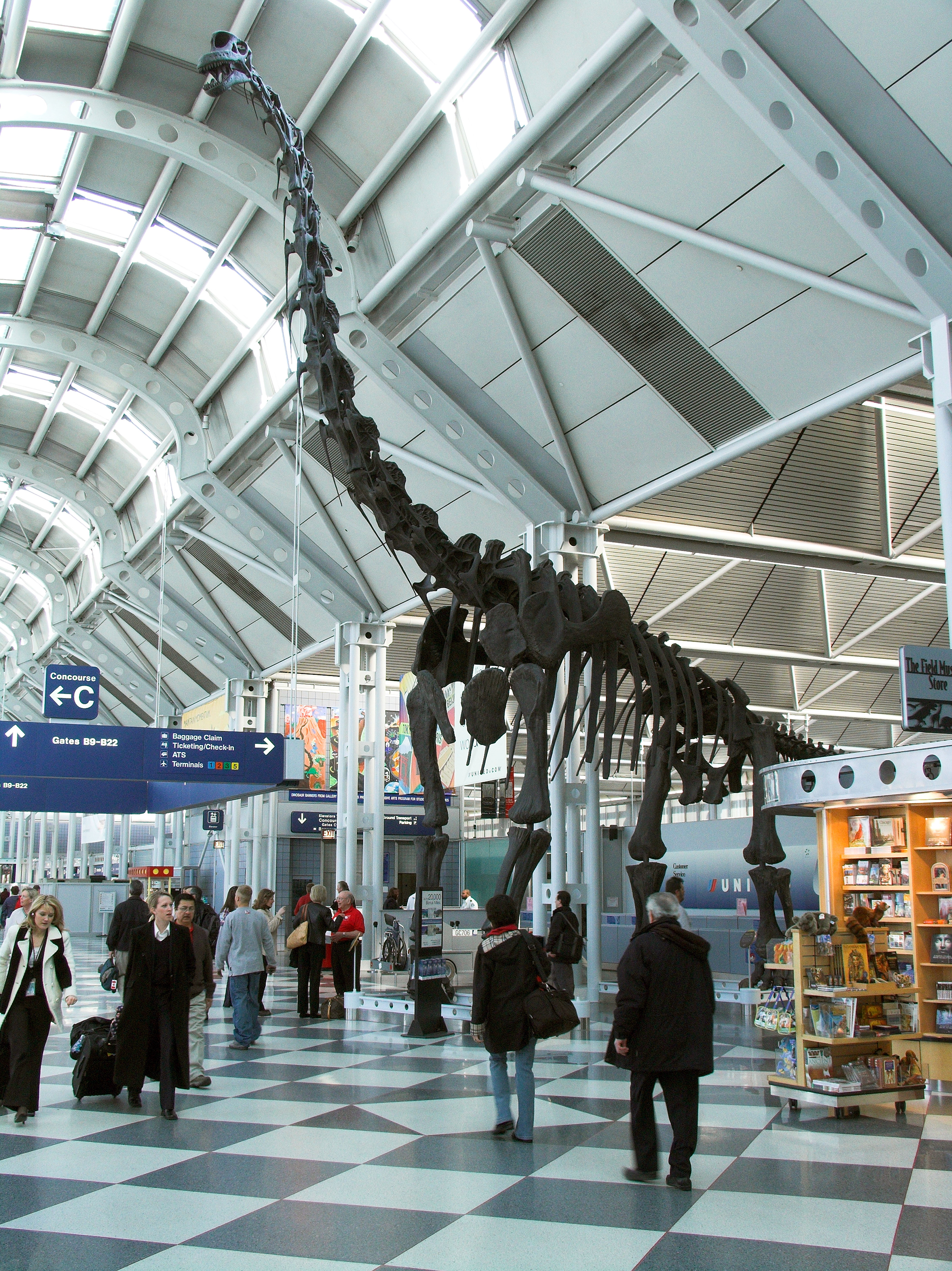 Moulded dinosaur skeleton in United Airlines Chicago OHare Airport terminal promoting airline partner the Chicago Field Museum