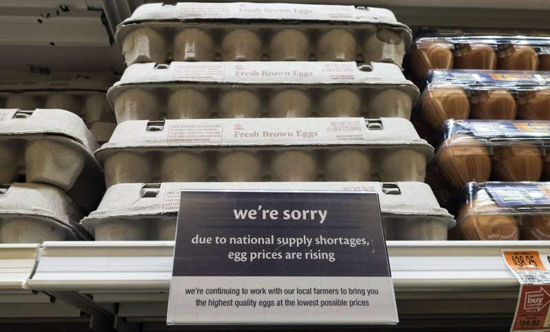 Egg prices are expected to hit a record high due to the bird flu outbreak of 2015.