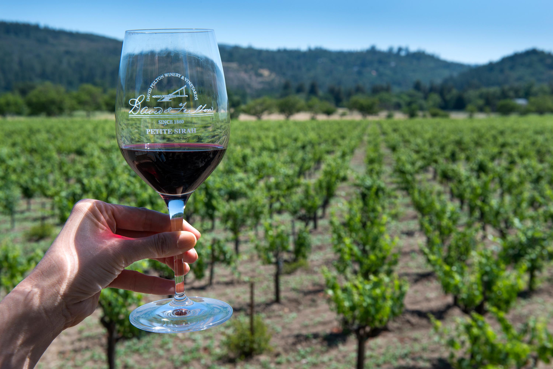 A glass of Petite Sirah at the historic David Fulton Winery & Vineyards.