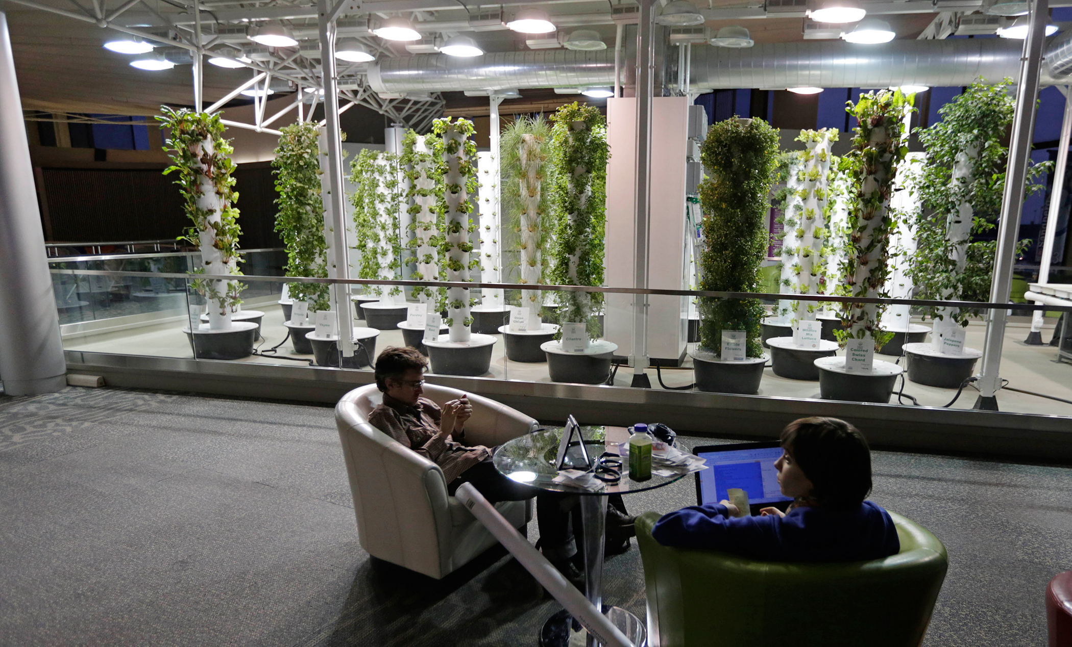 In this photo taken December 18, 2012, at O'Hare International Airport in Chicago, travelers David Janesko and Tess Menotti relax between flights next to O'Hare's Urban Garden where fresh herbs are grown and used in airport restaurants. Getting stranded at an airport once meant camping on the floor and enduring hours of boredom in a kind of travel purgatory with nothing to eat but fast food. Tough economic times are helping drive airports to make amends and transform terminals with a bit of bliss: spas, yoga studios, luxury shopping and restaurant menus crafted by celebrity chefs.