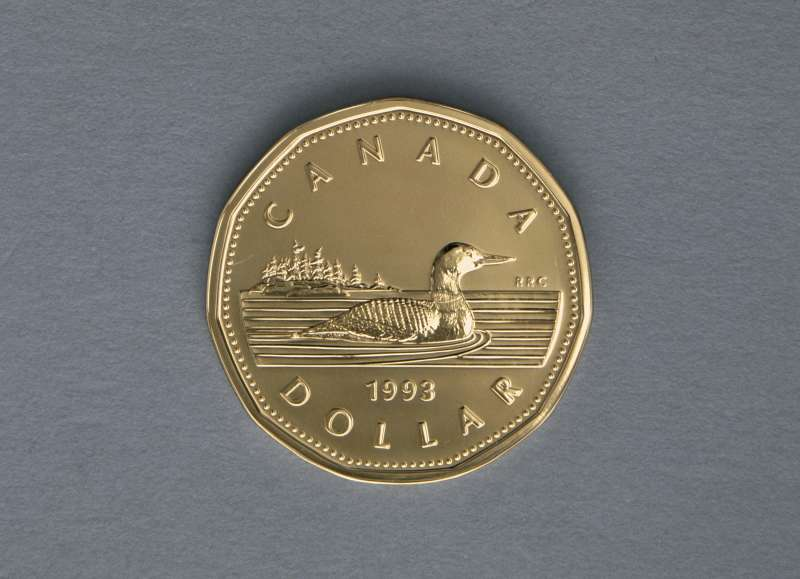 1 dollar coin, 1993, Reverse, Great northern loon (Gavia immer), Canada, 20th century