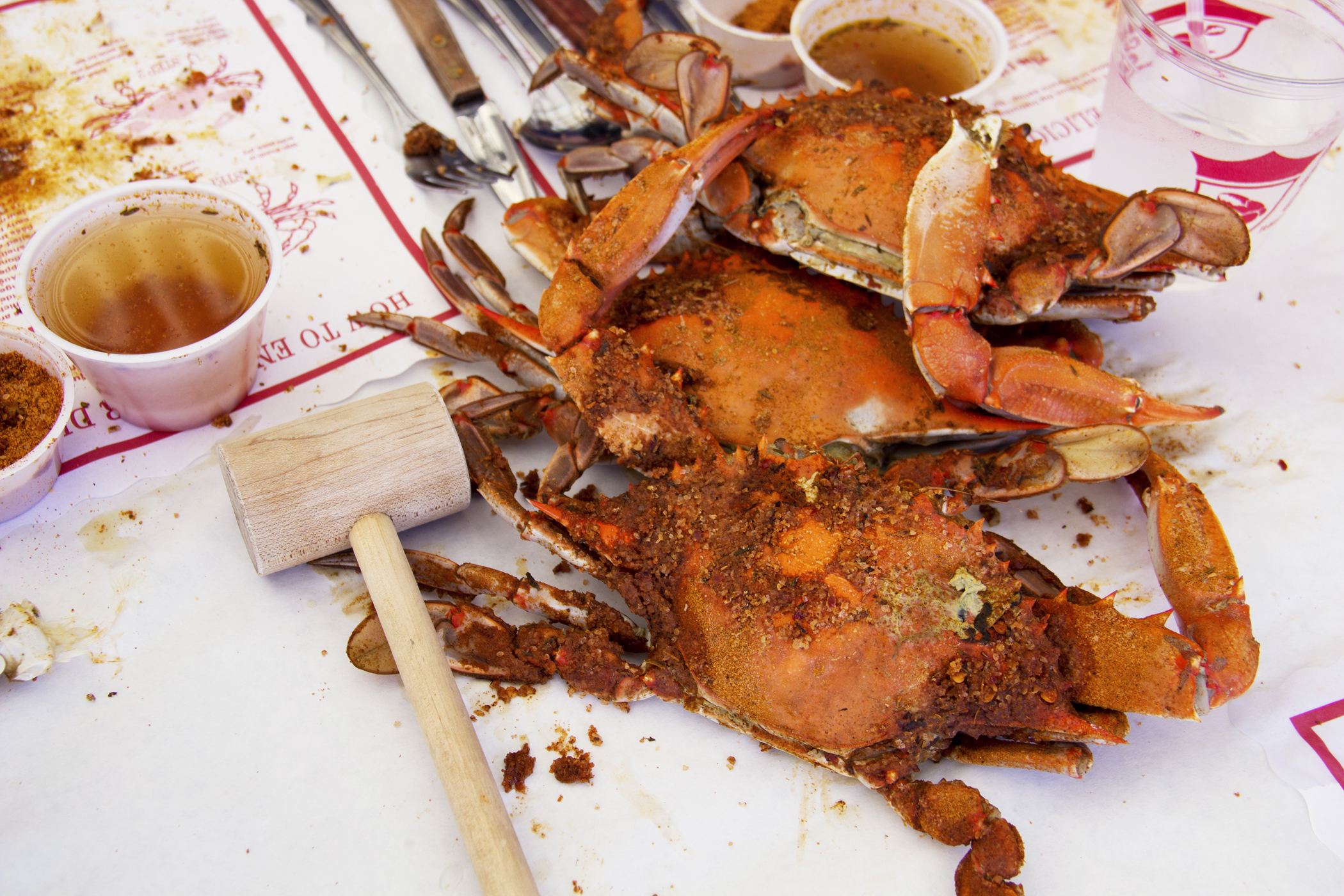 Old bay–spiced hard-shell crabs