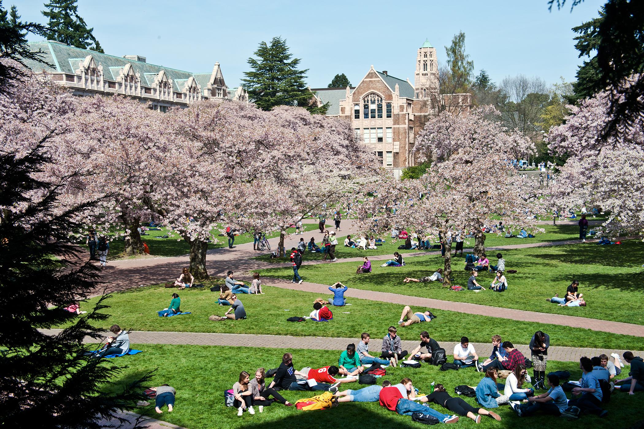 Yue Deng—University of Washington