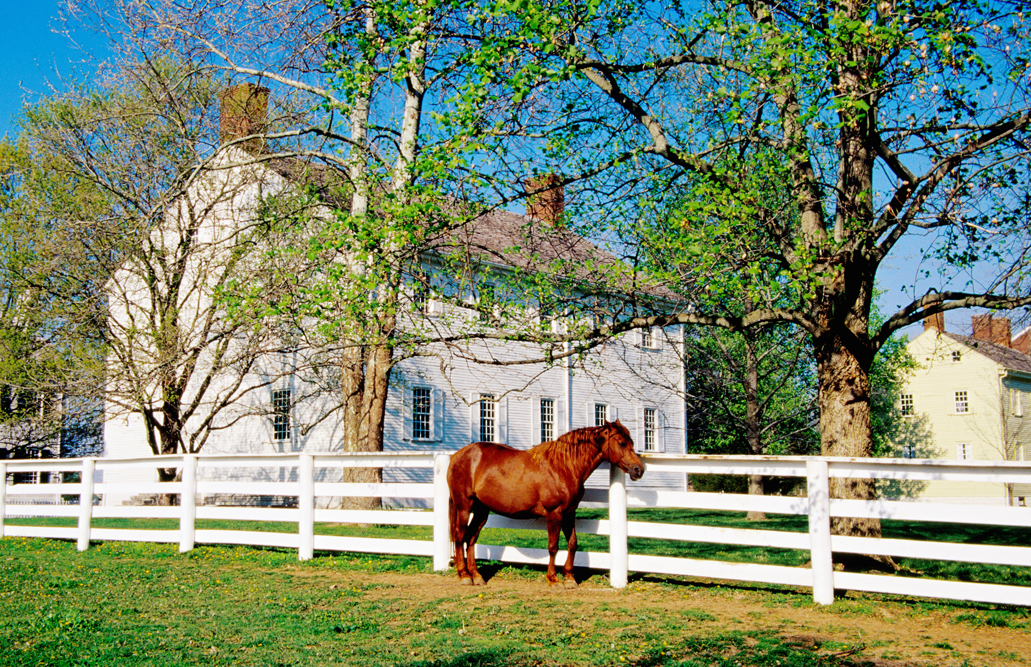 <strong>Lexington, Kentucky.</strong> The Horse Capital of the World is in the center of the inner Bluegrass Region. And have we mentioned you will never have to worry about finding good bourbon again?
