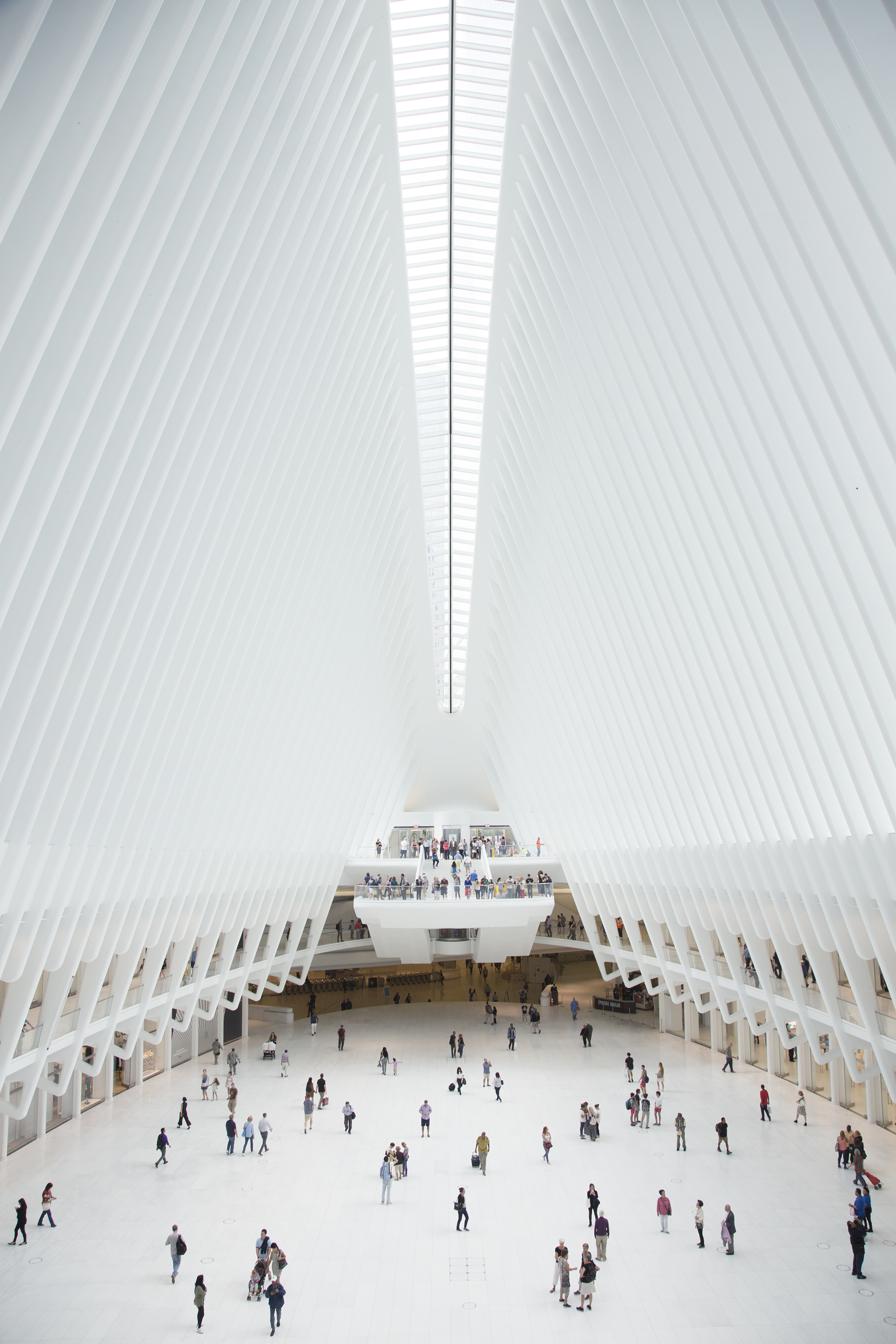 Santiago Calatrava's Oculus design inside of the World Trade Center transportation hub.