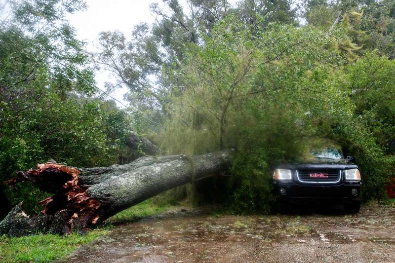 A downed tree from high winds rests against a car in a residential community after Hurricane Matthew passes through on October 7, 2016 in Ormond Beach, Florida. Florida, Georgia, South Carolina and North Carolina have all declared a state of emergency in preparation for Hurricane Matthew.
