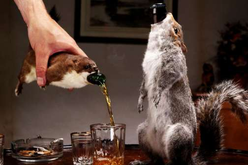 The $20,000 Rare Craft Beer That Comes Packaged in a Squirrel