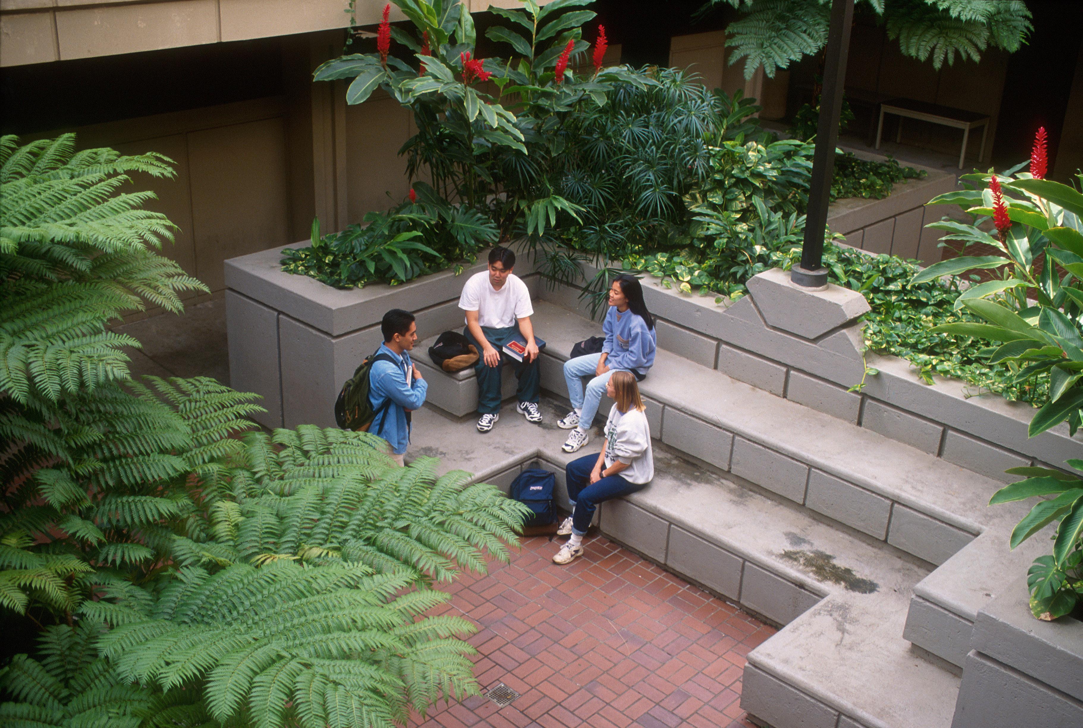 Law school courtyard