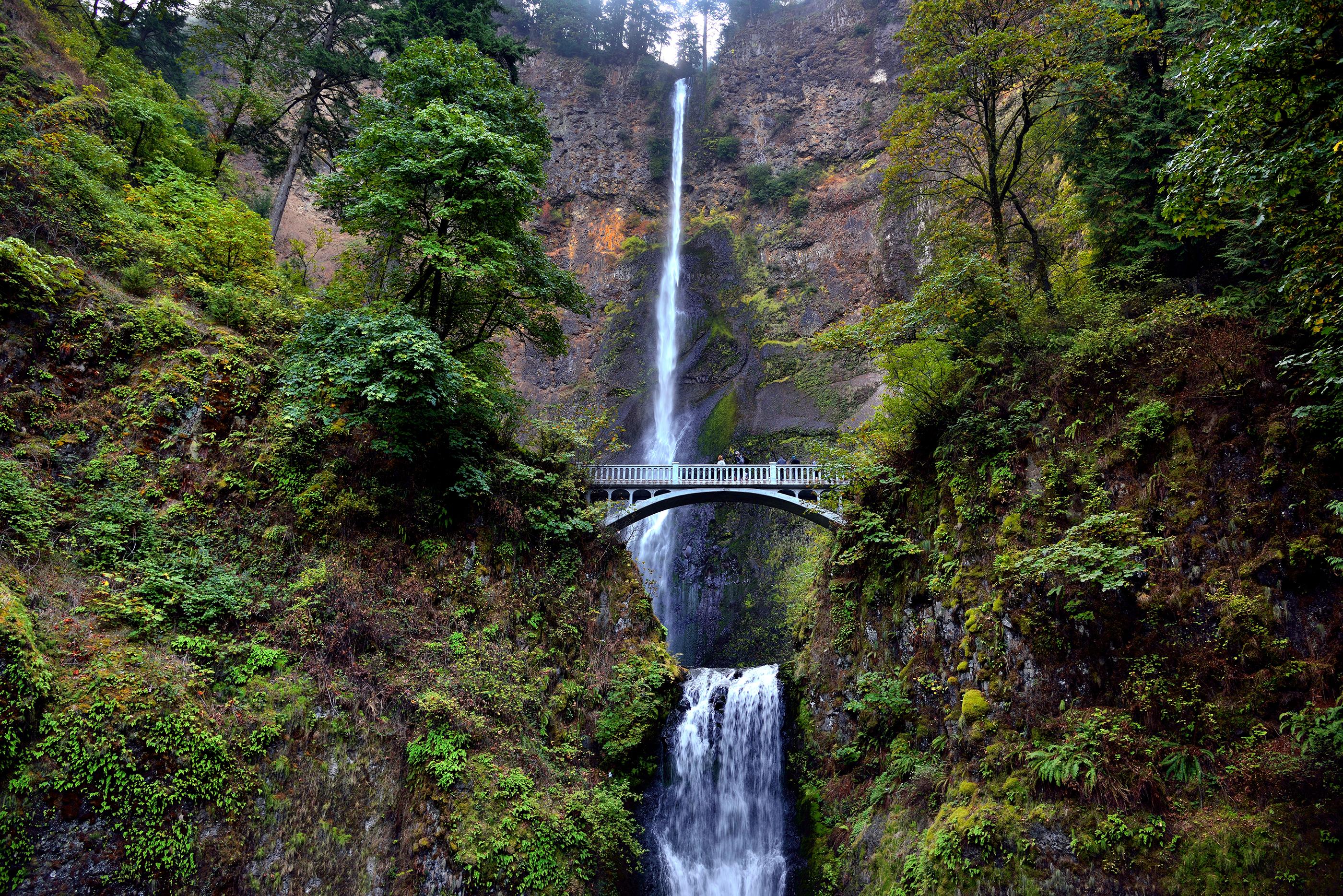 The Wonderful Beauty of Multnomah Falls