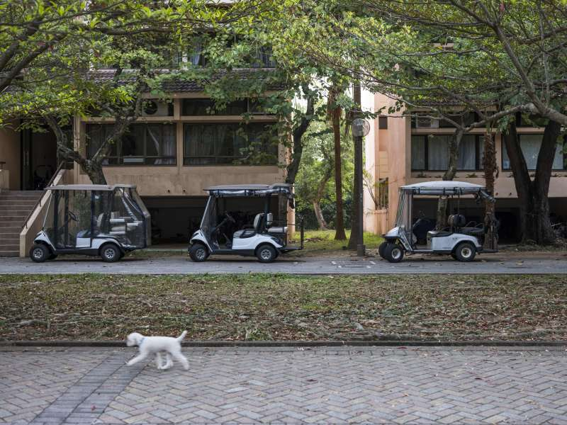A dog walks past golf carts parked in front of low-rise buildings in Discovery Bay on Lantau Island in Hong Kong, China