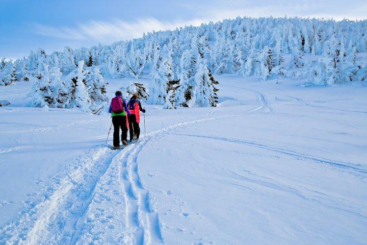 People snowshoeing in Bend, Oregon