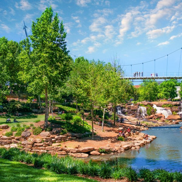 Greenery and footbridge in Greenville, South Carolina