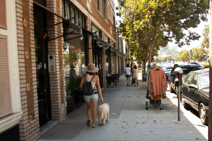 woman walking her dog on the sidewalk in eagle rock, los angeles, california