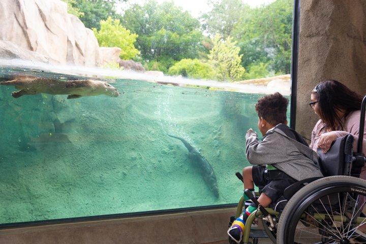 Fort Wayne, Indiana zoo