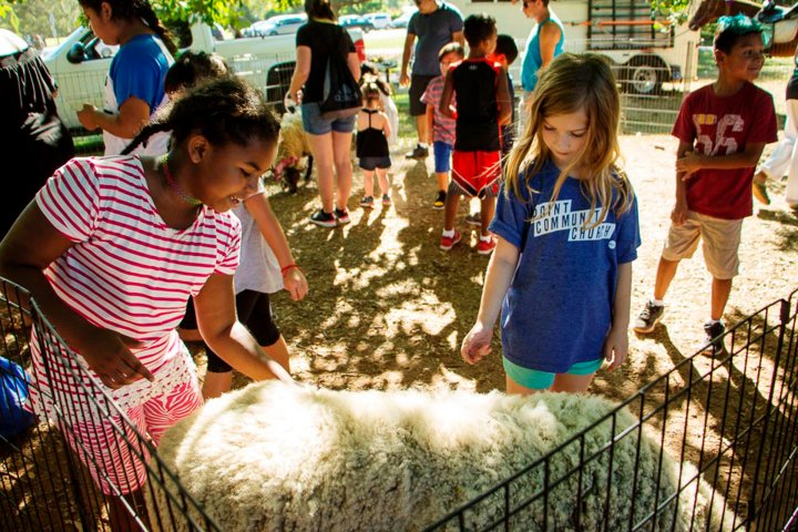 Children petting a lamb at a petting zoo in Franklin, New Jersey