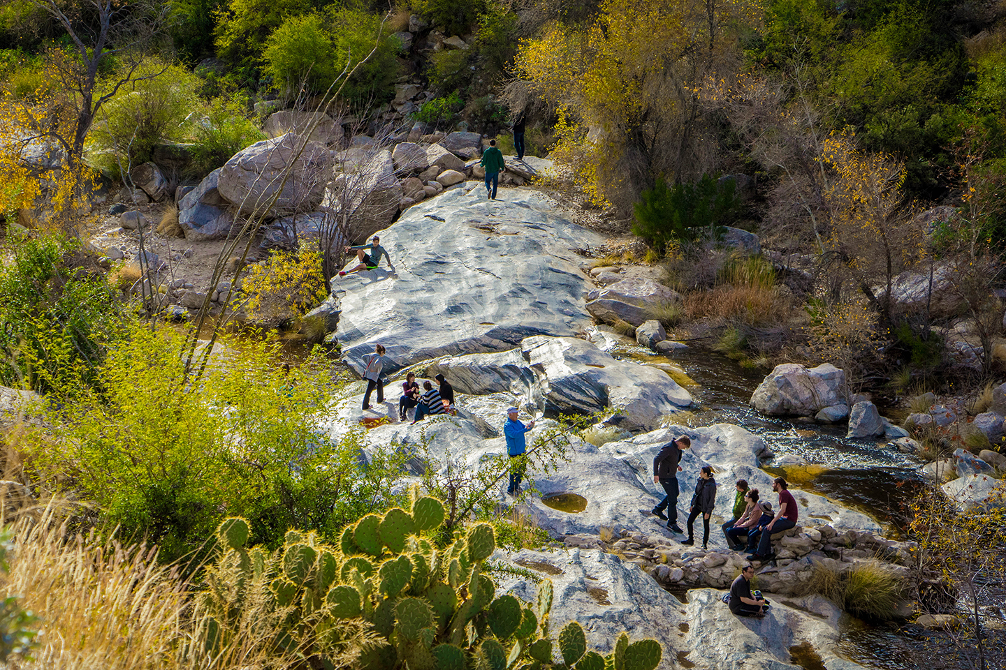 Located in the Catalina Foothills area is Sabino Canyon Recreation Area. A popular place for residents and visitors to hike, walk and enjoy the beauty of the Santa Catalina mountains.