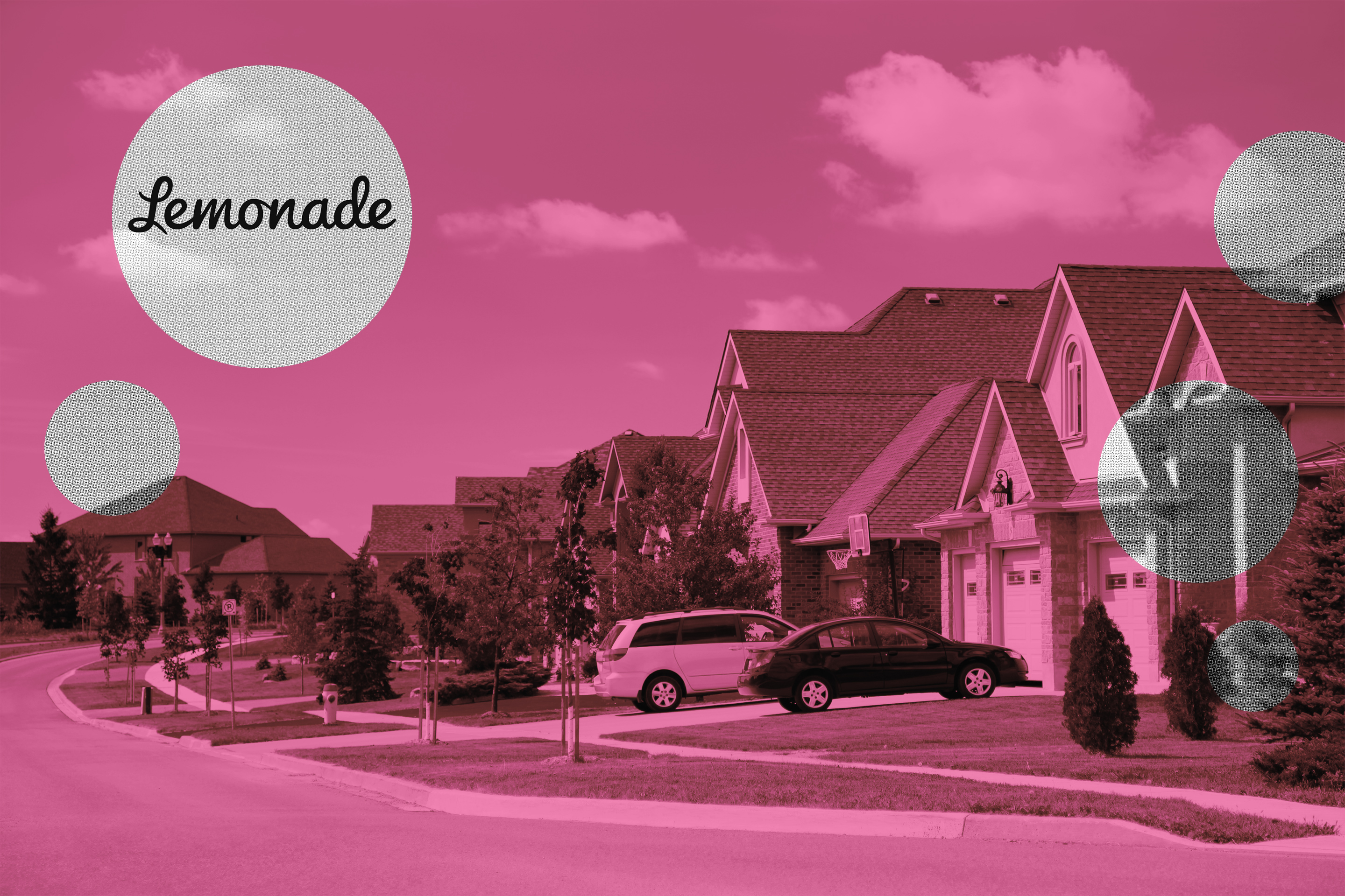 Lemonade: Home Insurance Review 2020