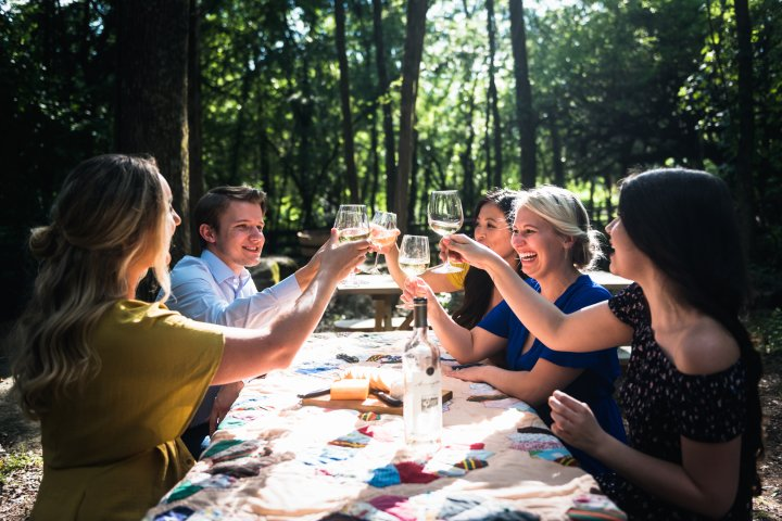 A group of friends cheers with wine glasses in Franklin Tennessee