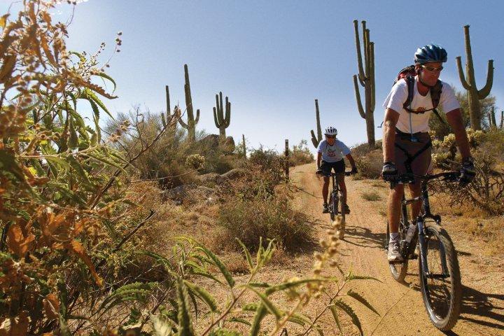 Two men mountain biking in Scottsdale's McDowell Sonoran Preserve in Arizona